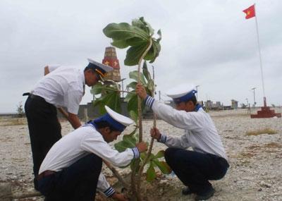 Cán bộ, chiến sĩ trồng cây bàng vuông trên đảo Phan Vinh.
