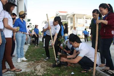 images820667 CD Du lich - Trường Cao đẳng nghề Du lịch Nha Trang: Trồng cây nhớ ơn Bác Hồ