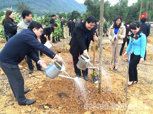 """IMG 6113a 1 - Chủ tịch nước phát động """"Tết trồng cây đời đời nhớ ơn Bác Hồ"""" năm 2016"""