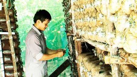images1169595 trongnam2 - Chàng thanh niên nhận giải thưởng Lương Định Của