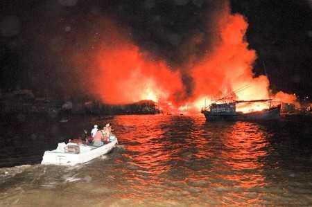 images2504478 APP 7804 - Vụ cháy ở cồn Nhất Trí: Tập trung khắc phục hậu quả