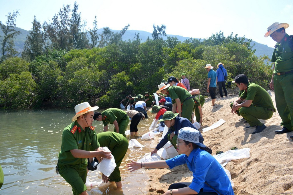 hinh 3 - Thả 4000 con cá giống tại rừng ngập mặn đầm Nha Phu