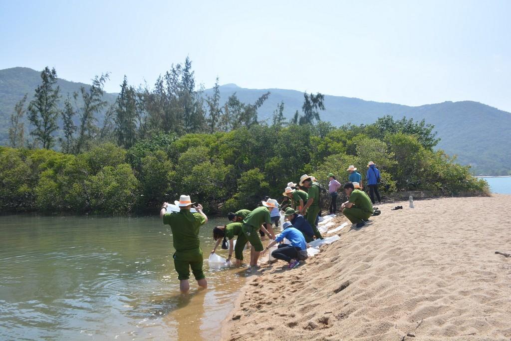 hinh 4 - Thả 4000 con cá giống tại rừng ngập mặn đầm Nha Phu