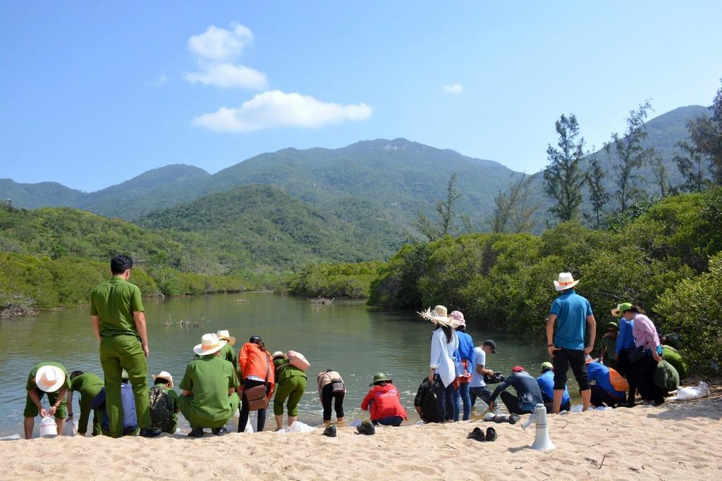 hinh 5 - Thả 4000 con cá giống tại rừng ngập mặn đầm Nha Phu