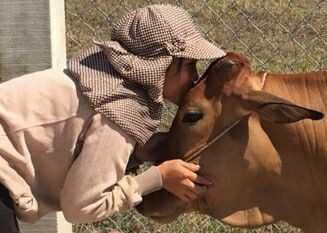 3071615712044396630203181067484319533557618n 15241462426901678711568 - Báo Tuổi Trẻ trao tặng 30 con bò giống cho bà con vùng bão lũ